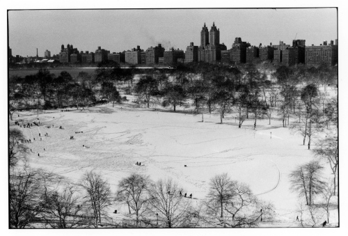 Photo taken from the roof of Mt. Sinai Hospital. Looking west across Central Park. Paul Goldfinger. Click left for full view