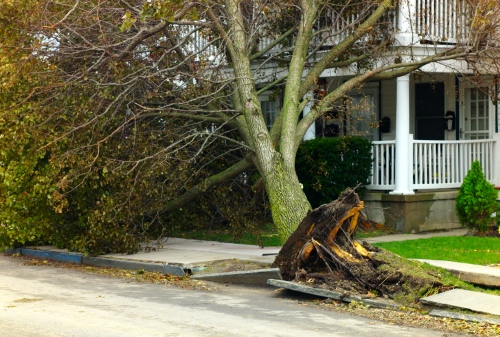 October 30, 2012.  Ocean Grove, NJ.  The day after Sandy. Paul Goldfinger photo. ©  Left click for full view