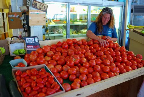 Tara Ferguson at Laurie's Market