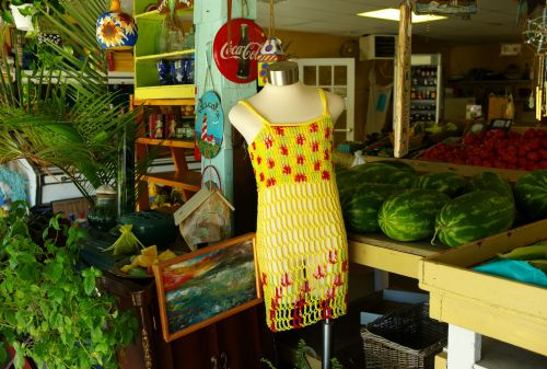 Aunt Diane's dress and art work