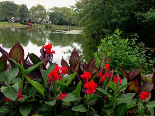 Spring Lake.  At the foot of 3rd Avenue is a park, a playground and a lake.   Paul Goldfinger photo