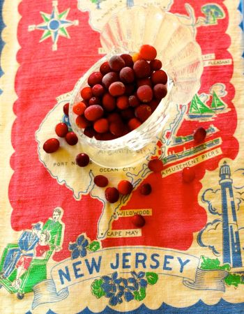 Fresh cranberries from New Jersey. Photo design by Eileen Goldfinger. Background is a 1950's dish cloth. PG photo ©