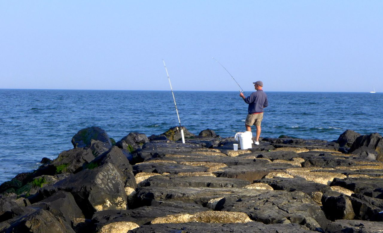 Related keywords suggestions for jetty fishing for Galveston jetty fishing report