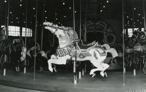 Central Park carousel.  By Paul Goldfinger ©