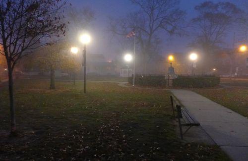 Firemen's Park. Nov. 17, 2013. By Paul Goldfinger ©   Click left