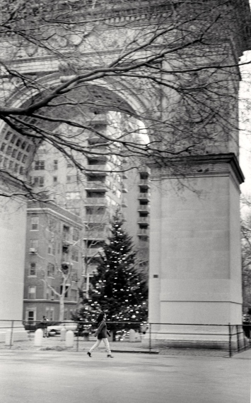 Washington Square Park. Paul Goldfinger photo © undated.