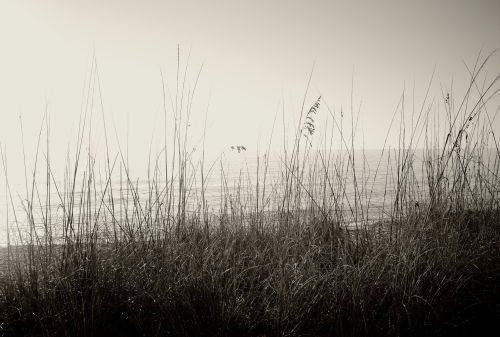 Boca Grande. 2013. By Paul Goldfinger ©