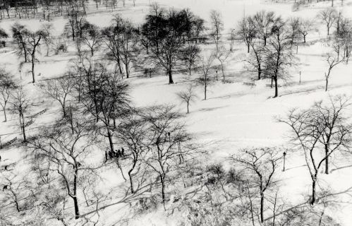 Central Park, 1969. By Paul Goldfinger ©  Silver gelatin print.