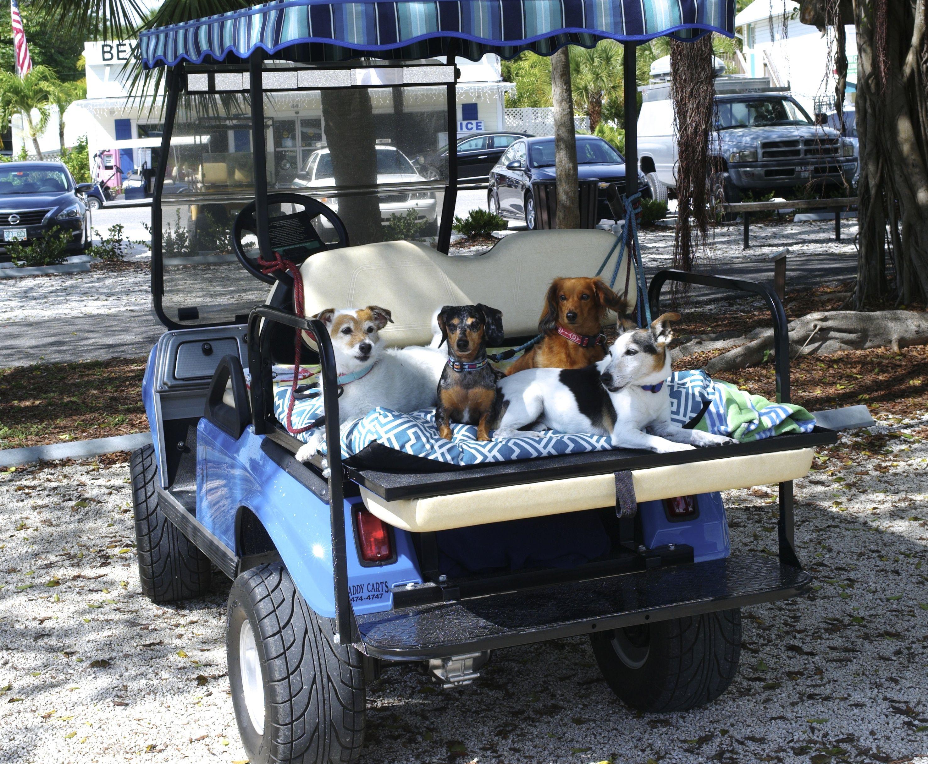 Puttin On The Ritz Blogfinger Visits Florida S