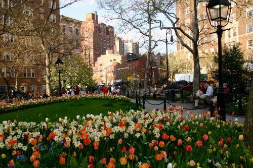 West Village.  Spring. By Eileen Goldfinger.©