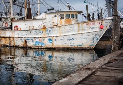 Point Pleasant Marina. By Bob Bowné. Special to Blogfinger ©