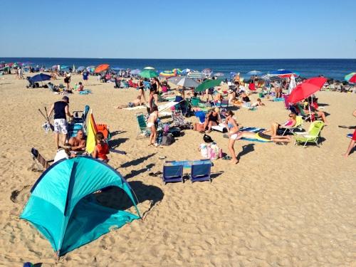 OG Middle Beach. July 5, 2014.  Paul Goldfinger photo. ©