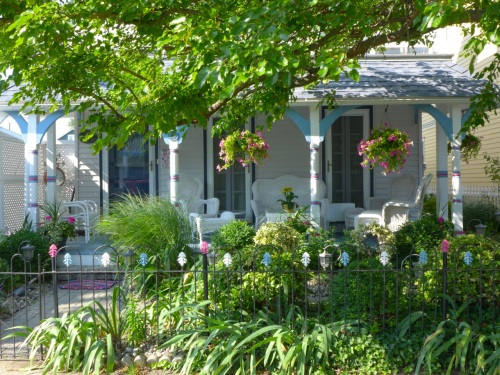 Landscaping adds allure to this Victorian.  Blogfinger photo 7/14. ©