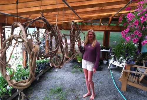 Laurie Price in her greenhouse. Blogfinger file photo 2013  ©