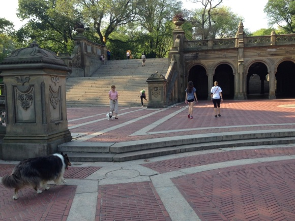 Central Park near Bethesda Fountain. Paul Goldfinger photo.©