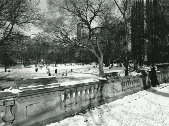 Central Park.  NYC Street Series by Paul Goldfinger. ©