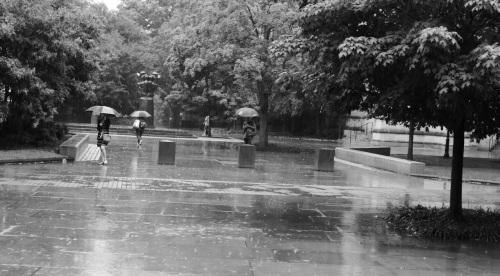 Princeton University campus. 2013. By Paul Goldfinger ©