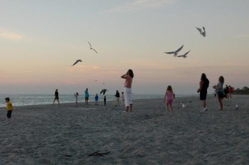 Captiva Island. Florida, 2006. By Paul Goldfinger ©