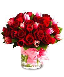 Red roses. A cliché?  Internet photo
