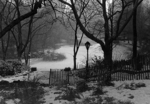 Central Park. c. 1995. By Paul Goldfinger ©. NYC Street Series.