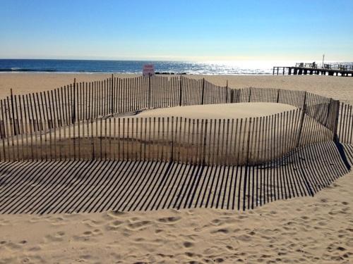 Please keep off dunes.  Ocean Grove. 3/29/15. Paul Goldfinger photo ©
