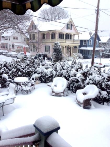 Backyard, Delaware Ave.  Photo by Steve M. citizen photographer.