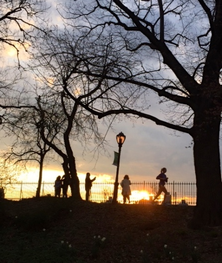 CEntral Park, along the reservoir. April 17, 2015. By Stephen Goldfinger, NYC BF correspondent. ©
