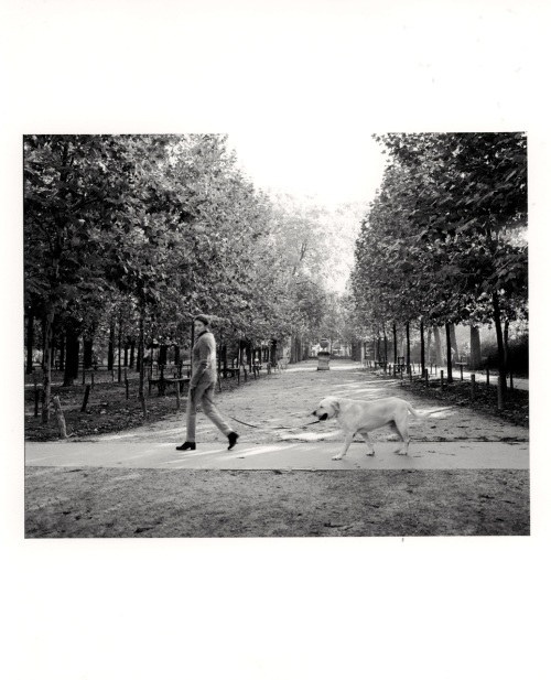 Luxembourg Gardens, Paris. c.1999. By Paul Goldfinger