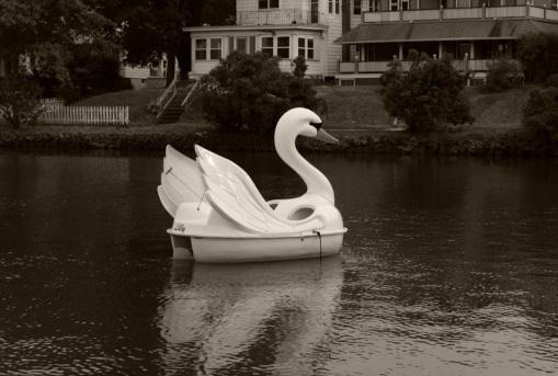 Wesley Lake, Ocean Grove. 2013. By Paul Goldfinger ©