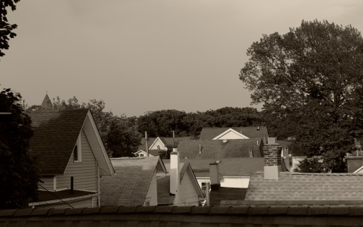 North End rooftops in the Grove. By Paul Goldfinger ©