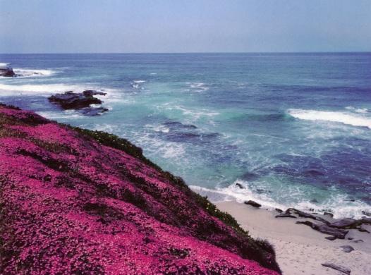 Santa Barbara, California. 1993. By Paul Goldfinger. ©