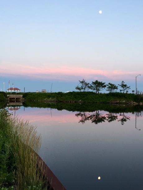 Fletcher Lake, Ocean Grove.  By Carolyn Egan. l ©