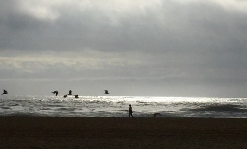 Ocean Grove beach.  September 29, 2015. By Moe Demby.  Blogfinger.net staff. ©