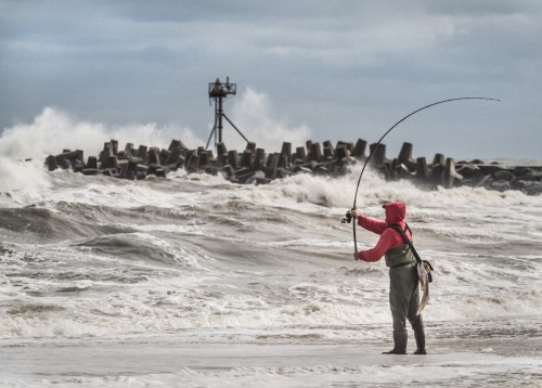Surf fishing at the Manasquan Inlet. Oct. 9, 2015. By Bob Bowné. Special to Blogfinger ©.