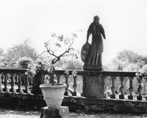 Villa Antinori, Italy. Paul Goldfinger photograph. © Undated.