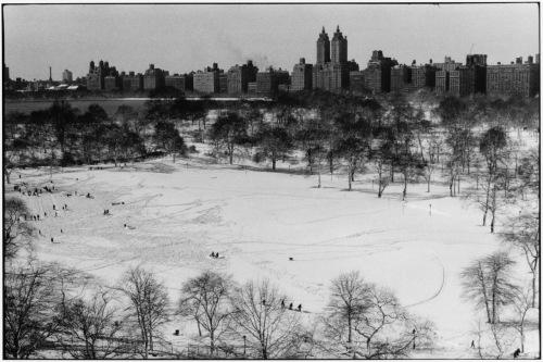 Central Park. Taken on the top floor of Mt. Sinai Hospital, 5th Avenue. Paul Goldfinger photo. ©