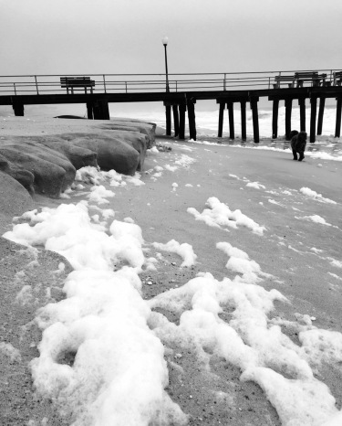Ocean Grove.  January 10, 2016. By Prosper Bellizia, Blogfinger staff. ©