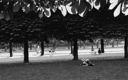 Tuileries  Garden. Paris.  By Paul Goldfinger. Silver gelatin darkroom print. ©  Click to enlarge. Blogfinger.net