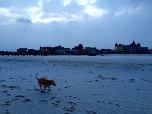 Ocean Grove beach. by Moe Demby, Blogfinger staff ©