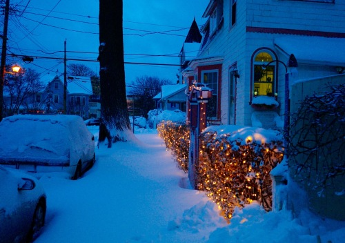 Delaware Avenue. Twinkle twinkle blizzard. Ocean Grove. January 23, 2016. Paul Goldfinger photo. ©