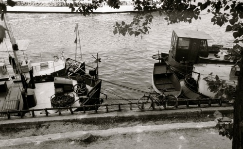 Boats moored along the Seine. Paul Goldfinger photo ©