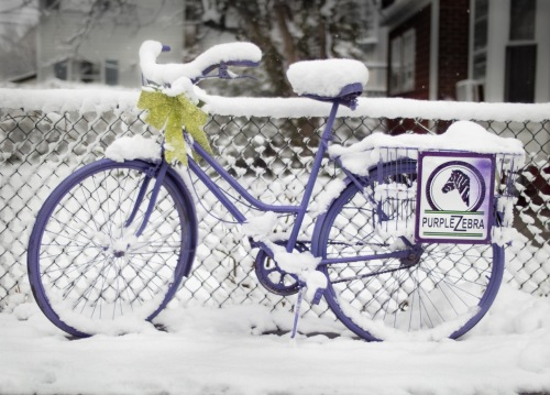 """Well…obviously we had snow here today in The Grove….and I can assure you that as of mid-afternoon, that no deliveries have been made form The Purple Zebra Boutique at 76 Main Avenue.""  By Bob Bowné  ©"