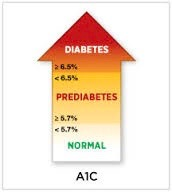 Diagnosis of diabetes mellitus using the glycated hemoglobin blood test (A1C)