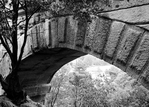 Arles, France. By Paul Goldfinger ©. Film negative, scanned positive. Undated