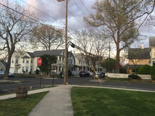 Stop! New Jersey Ave. and Mt. Hermon Way meet at the northeast corner of Firemen's Park. Paul Goldfinger photograph © 4/25/16