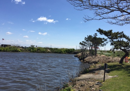 South end of Fletcher Lake as seen from the Bradley Beach side. WE can still have an open vista at the North End if we fight the voracious NERP. Blogfinger photo 5/16/16 ©