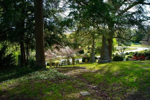 Hollywood Cemetery. Richmond, Virginia. April, 2016. Paul Goldfinger photo. ©