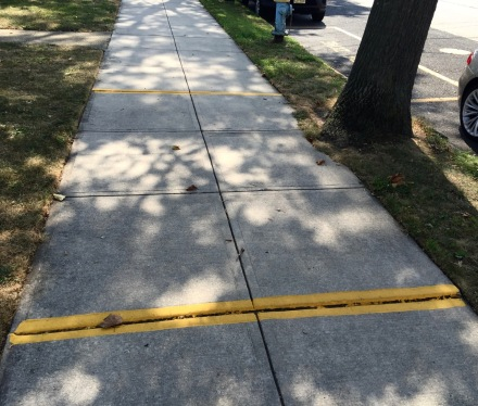 Anyuone knowo the meaning of these yellow lines along the edge of Firemen s Park?  Blogfinger photo .