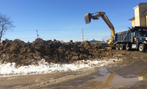 In Feb. 2015 this empty lot was known for its piles of dumped dirt. Who knows what lives in that soil?    Blogfinger photo.