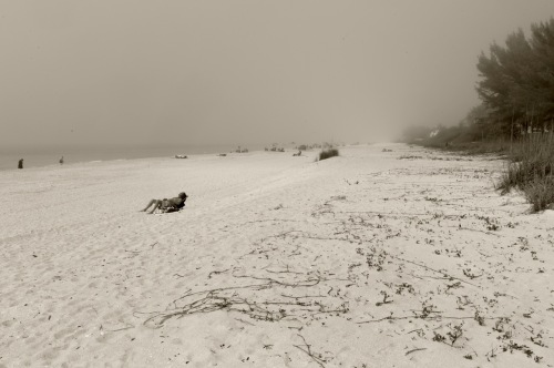 Gasparilla Island.  Florida.Paul Goldfinger photo. 20124 ©